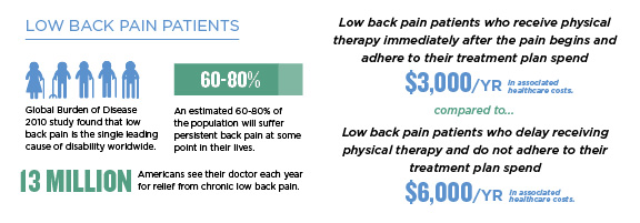 2016-breakthrough-low-back-pain-patients-infographic
